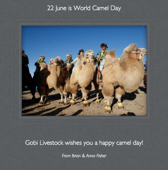 Happy Camel Day